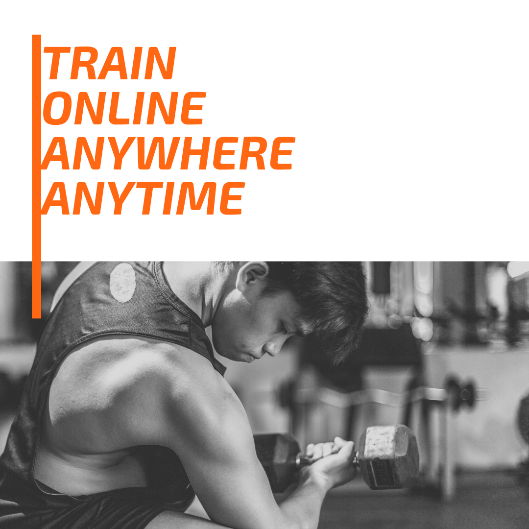 online personal trainers